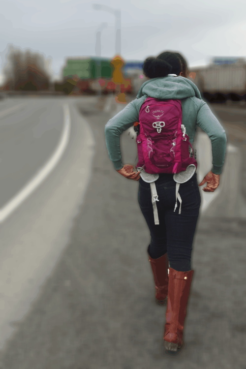 Day Hiking Backpack Reviews